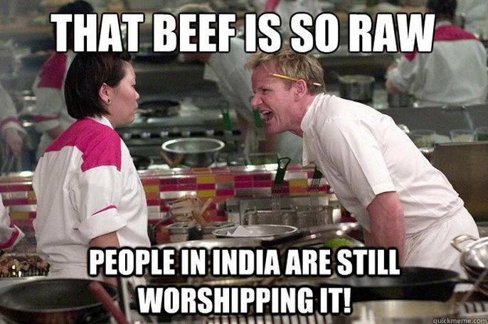 Chef Ramsay Memes are way to underrated.