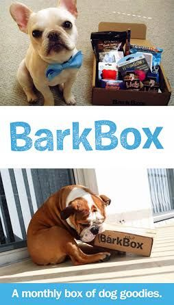 A box of high quality dog products for your pup, delivered to your door every month//