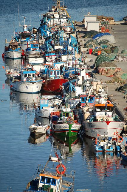 Sines (Portugal) traditional small fisherman boats harbour It's home :) <3