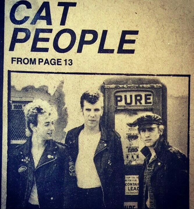 By got_cat_classCAT PEOPLE find out just what Jim, Brian