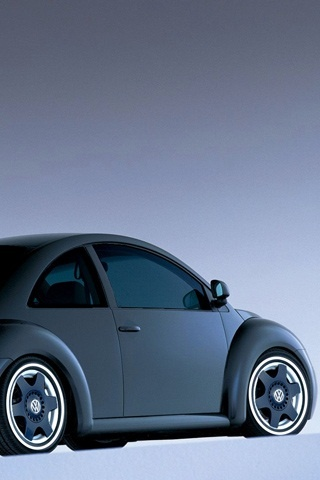New found respect for a new beetle...