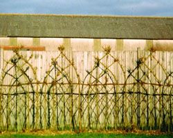 "Woven willow fencing or ""Fedge"". LOVE this shaping!"