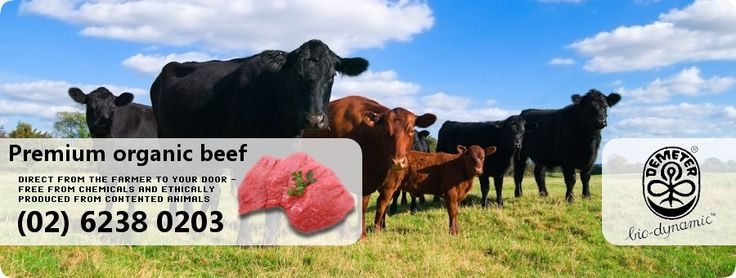Greenhill Farm Organic Grass fed Beef Bungendore