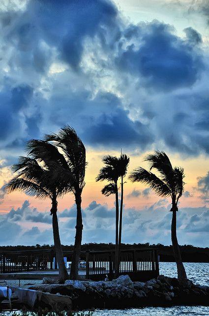 love Key West !  Florida Keys