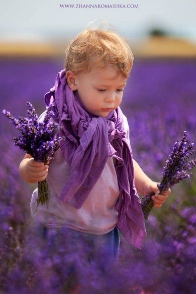 Sweet Child walking in a lavender field collecting the flowers.