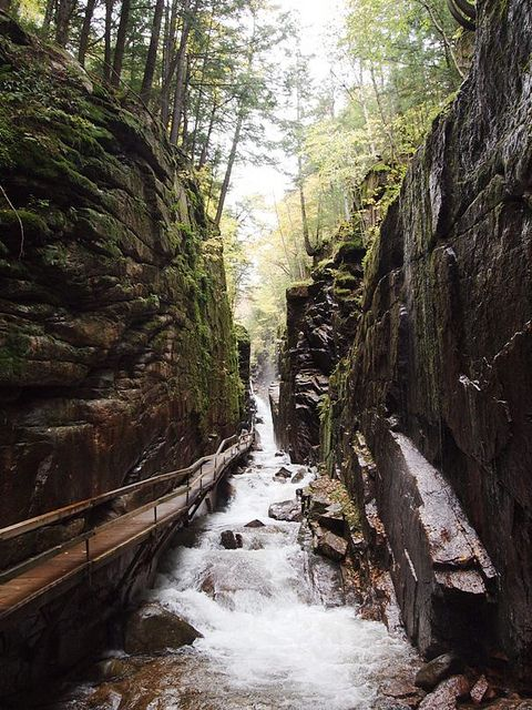 Flume Gorge, Franconia Notch State Park, NH