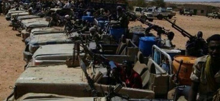 L'UE soutient une milice des Frères musulmans au Soudan  LES DEMOCRATIES  DE PACOTILLE SOUTIENNENT LES MERCENAIRES AU SOUDAN