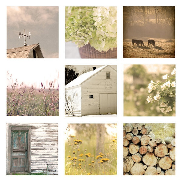 Farmhouse Home Decor Set, Rustic, Country Living Photos, soft, golden, yellow, teal, cottage chic, floral, barn, dreamy, cottage chic. $50.00, via Etsy.