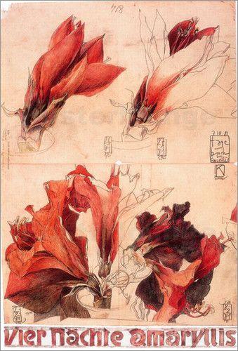 Horst Janssen - the Best of  Artists EVER - Amarillys Flowers