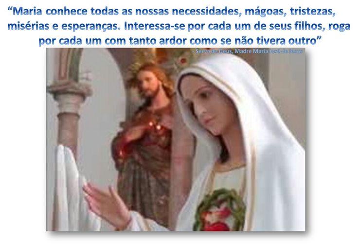 """""""Maria conhece todas as nossas necessidades, mágoas, tristezas,misérias e esperanças. Interessa-se por cada um de seus filhos, rogapor cada um com tanto ardor como se não tivera outro"""" - Serva de Deus, Madre Maria José de Jesus"""