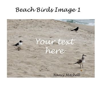 This is a cute image of beach birds. This is one image of the beach birds. It is ready to use as an instant download. (No physical item will be…