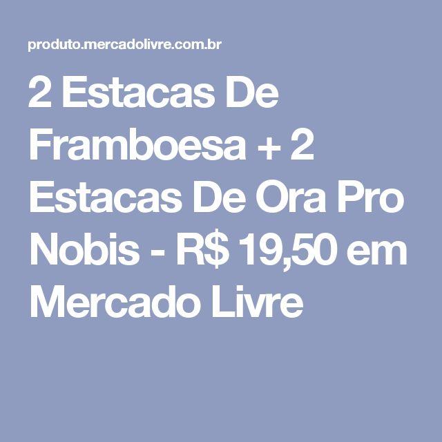 2 Estacas De Framboesa + 2 Estacas De Ora Pro Nobis - R$ 19,50 em Mercado Livre
