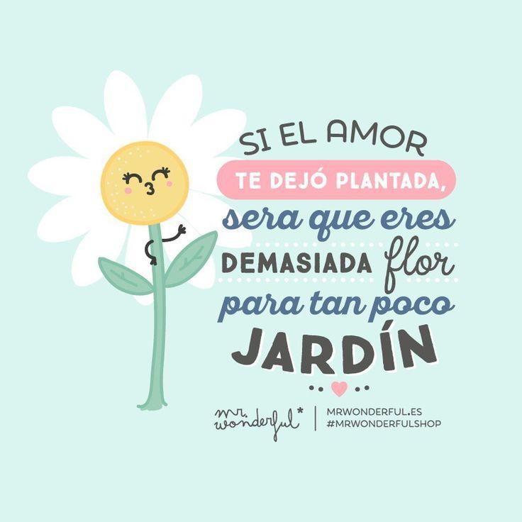 Si el amor te dejó plantada, será que eres demasiada flor para tan poco jardín, Mr Wonderful