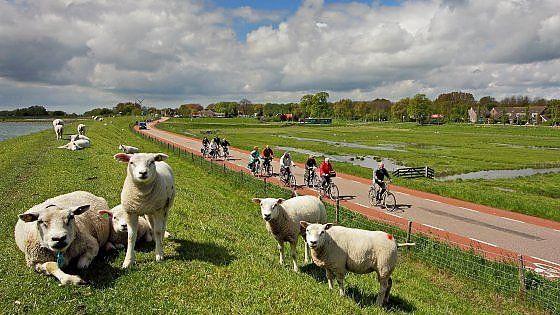 Un percorso attraverso l'Ijsselmeer, il cuore dei Paesi Bassi, dove per secoli si è combattuta la battaglia per strappare terra al mare. Tra musei all'aperto e gite in battello