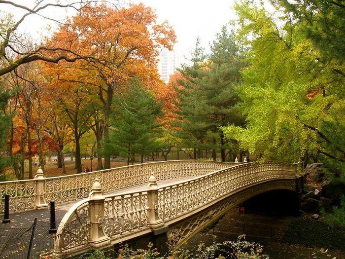 bridge and autumn 11 (700x525, 538Kb)