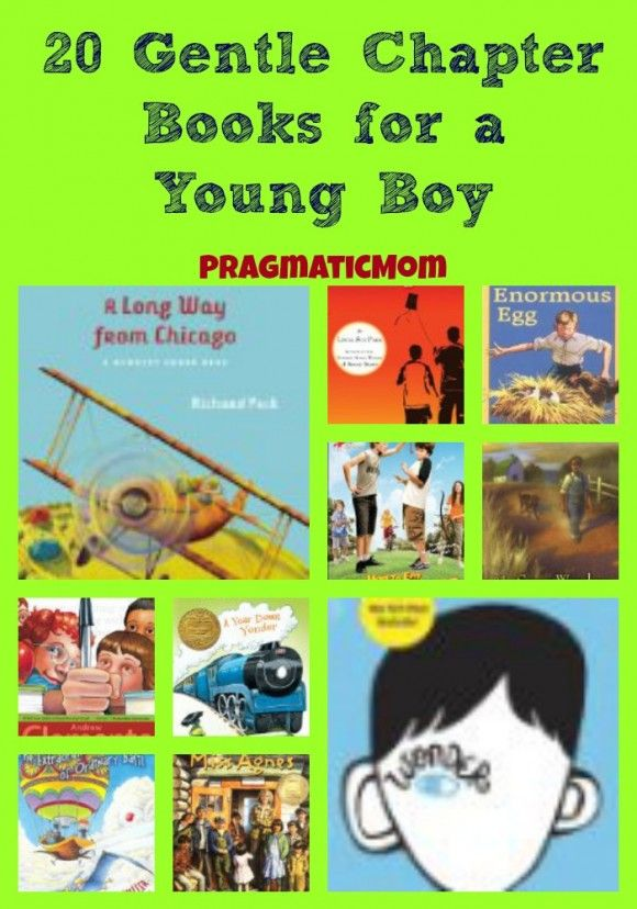 20 Gentle Chapter Books for a Young Boy from Pragmatic Mom