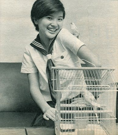 Back To Junko (1973 -) ~桜田淳子と70年代への回帰 ファン歴カミングアウト