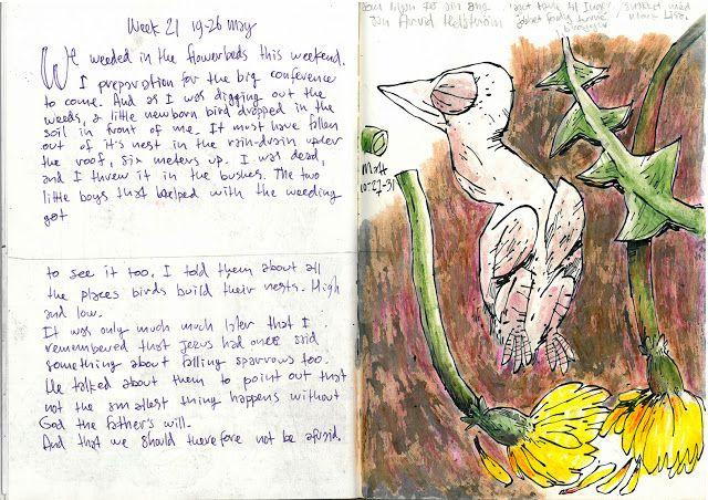 Drawing Diary: Week 21 2013 nr2