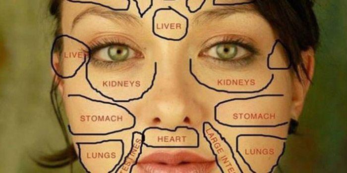 Wanneer een van onze grootste organen – onze huid, symptomen begint te geven, kan dit een indicatie zijn dat er iets mis is. En wat dat is, kunnen we zien aan ons gezicht. Volgens de Chinese …