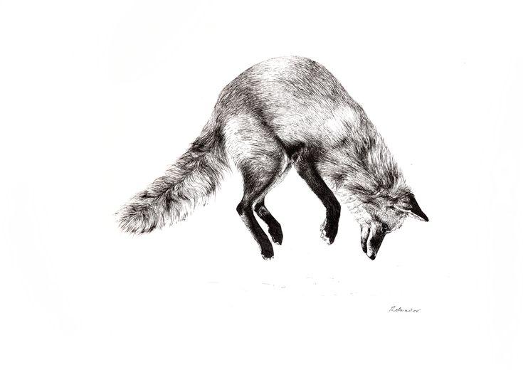 Leaping Fox - ORIGINAL - 150€ Illustration by Ariane Relander