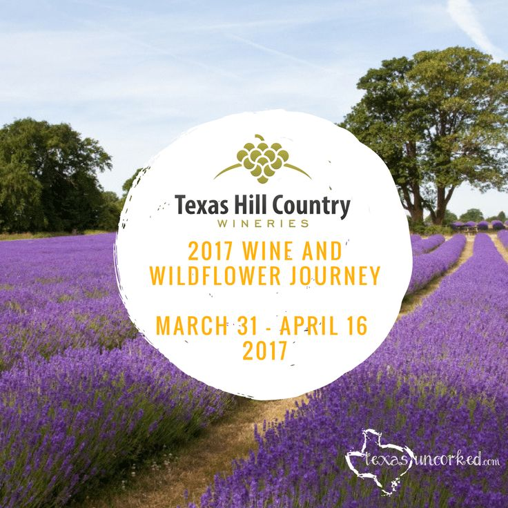 Hit the Wine Trail in Hill Country with a passport to 48+ wineries for one low price! Wine Tastings at each winery are included.   Texas Uncorked, Texas Wineries, Texas Wine Events, Winery Events, Fredericksburg Wine Events