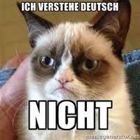 ich verstehe nicht deutsch