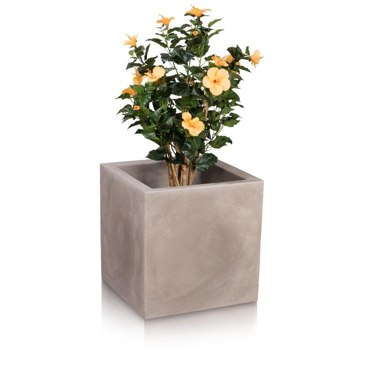 ber ideen zu pflanzk bel kunststoff auf pinterest blument pfe pflanzk bel rattan und. Black Bedroom Furniture Sets. Home Design Ideas