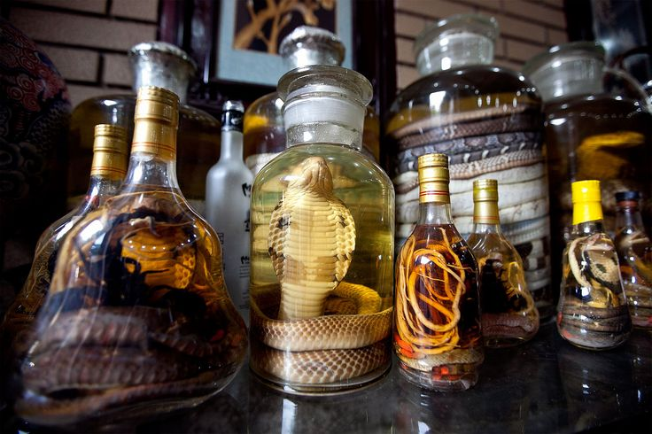 picture of snakes in wine bottles