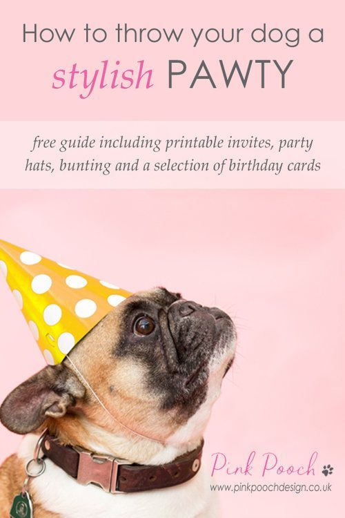 Dog Birthday Party Guide Including Free Printable Cards And Invites Dogbirthdayparty Printabledogcards Dogpartyideas