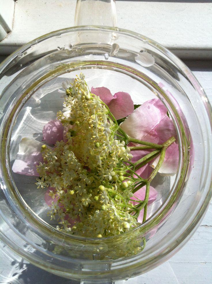 Flower tea. Blomsterte af rose, tusindfryd og hyldeblomst