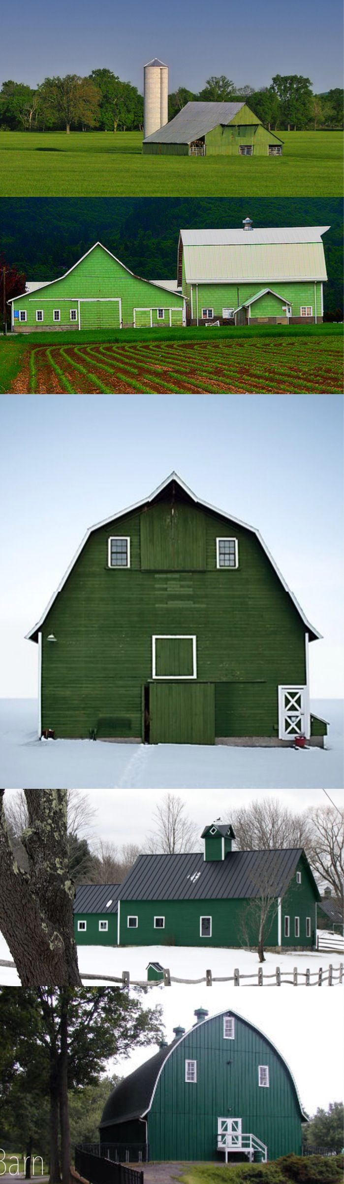 Barns O' green... I DO love green barns.  I did not say green beans.