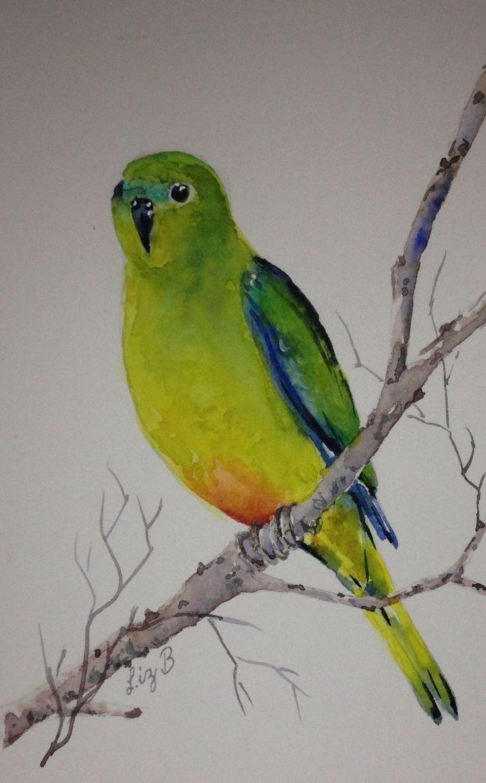 'Orange-bellied Parrot' by Liz Butcher
