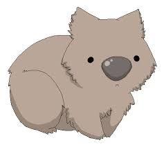 cute wombat drawing