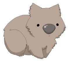 Wombat Drawing 17 best images about W...