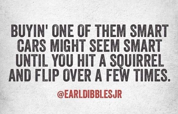 Buyin' one of them smart cars might seem smart until you hit a squirrel and flip over a few times. -Earl Dibbles Jr.