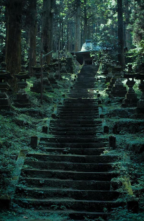 île de Kyushu                                                                                                                                                      Plus