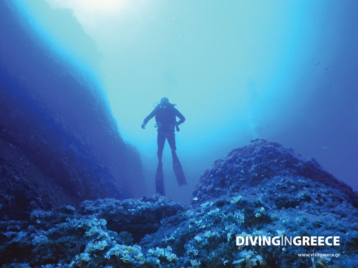 At Florida Blue Bay Resort we have plenty of it!  Book your room now and join our 2013 diving groups!
