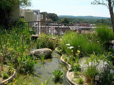 Zelené střechy a střešní zahrady