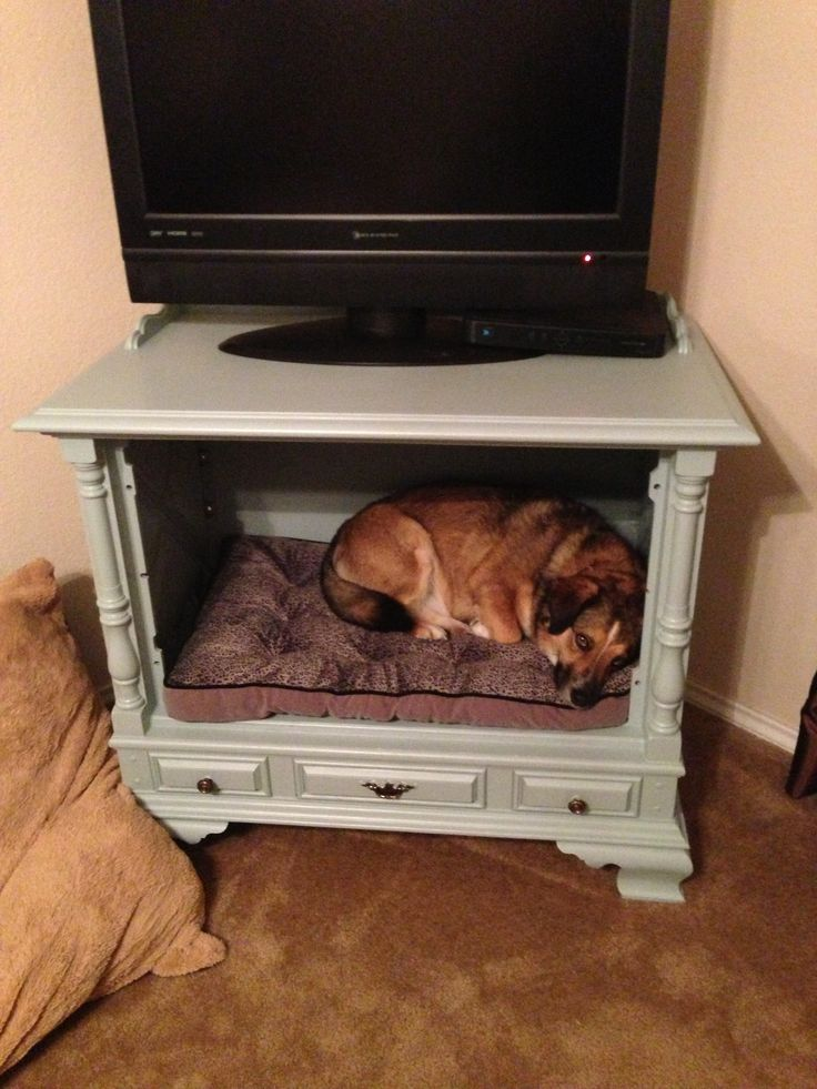 The 25 best tv dog beds ideas on pinterest old tv for Cheap bed stands