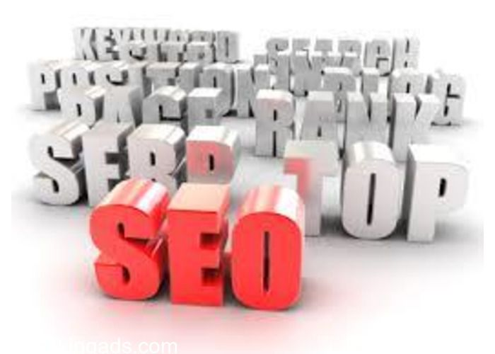 Web Services , SEO Agency The Best and Latest SEO Practices and Apply The Safest & Most Efficient SEO Strategies and Tactics to Bri...