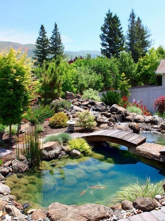 jardin de rocaille avec bassin, ponton en bois et carpes koï