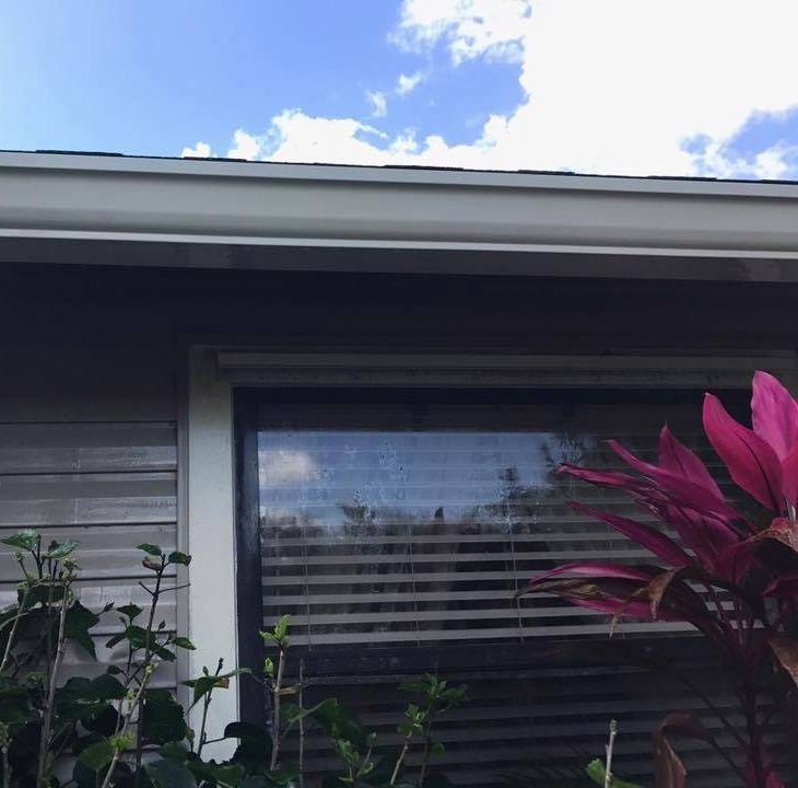 Gutters are an integral piece of your home's well being. Let Red Beard's Home Services take care of this ...