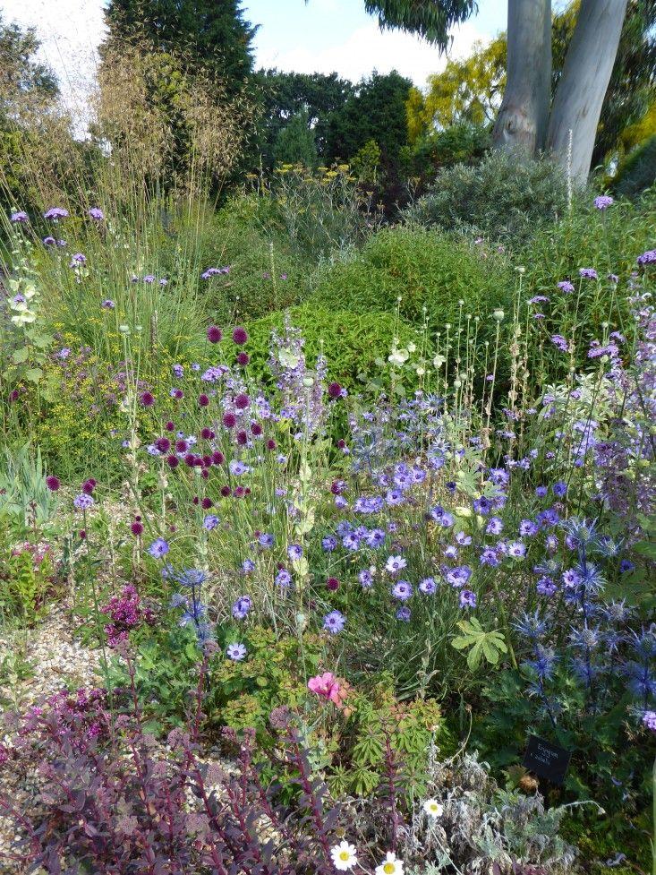 16 best Garden Design Tips images on Pinterest Garden ideas
