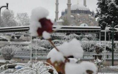 6 Ocak 2015 Kar Yağışı, İstanbul'da Okullar Tatil Edildi