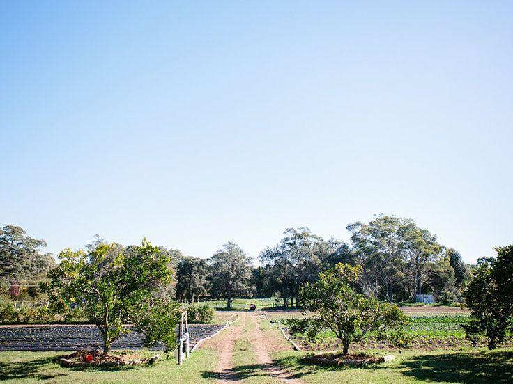 A COMMON2US FARM LUNCH #theslowpoke #organicfarm #farmtotable Photo: Luisa Brimble
