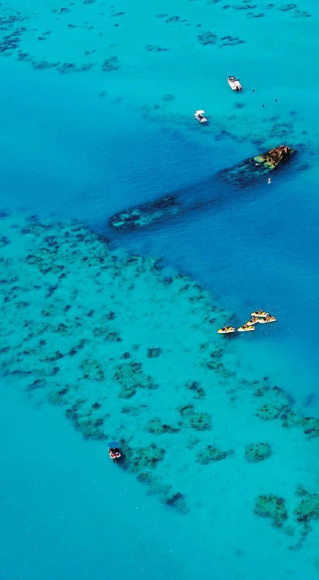 #Bermuda #stayreefs http://www.thereefs.com/  (Pin provided by Elbow Beach Cycles http://www.elbowbeachcycles.com)