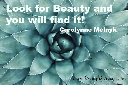 Beauty is everywhere and in everyone.