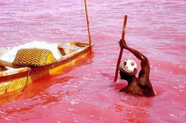Розовое озеро Ретба (Retba), Сенегал - Туристический портал - Мир красив!
