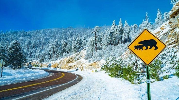 Widespread rain and snow will move into Southern Arizona