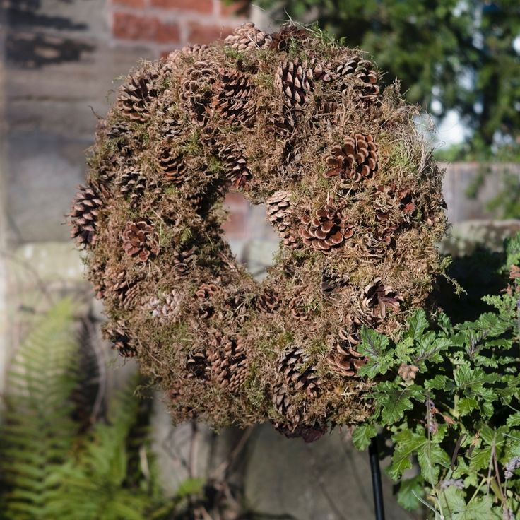 Moss and pine cone wreath adorn our chesnut tree